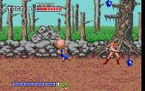 Golden Axe DOS Tyris hits the thief for magic potions (EGA).