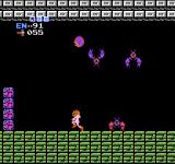 Metroid NES Chased by jumping enemies in Ridley's hideout.