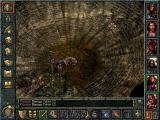 Baldur's Gate Windows Centeol the spider queen is the reason Cloakwood  is dreaded.