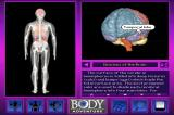 3-D Body Adventure DOS You can go into further details about the different brain sections.