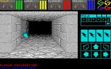 Dungeon Master: Chaos Strikes Back - Expansion Set #1 Atari ST Prison, New party selected