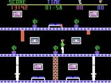 The Heist ColecoVision Steal the paintings, but avoid the security systems!