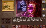 Lands of Lore: The Throne of Chaos DOS ...but later the designers got a bit carried away