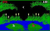 Frog Bog Intellivision You can also play at night