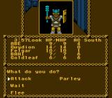 Pool of Radiance NES Encounter with <b>Goblins</b>
