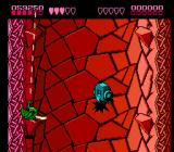 Battletoads NES Whatever that's supposed to be!?