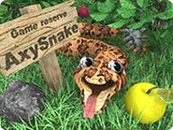 AxySnake Windows Front Cover