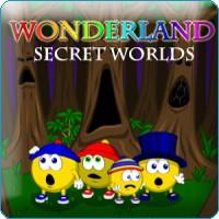 Wonderland Secret Worlds Windows Front Cover