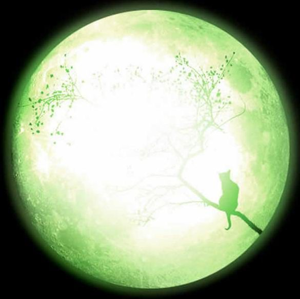Green Moon Windows Front Cover