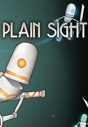 Plain Sight Windows Front Cover