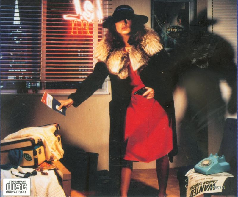 Where in the USA Is Carmen Sandiego? (Deluxe Edition) DOS Other Jewel Case - Back