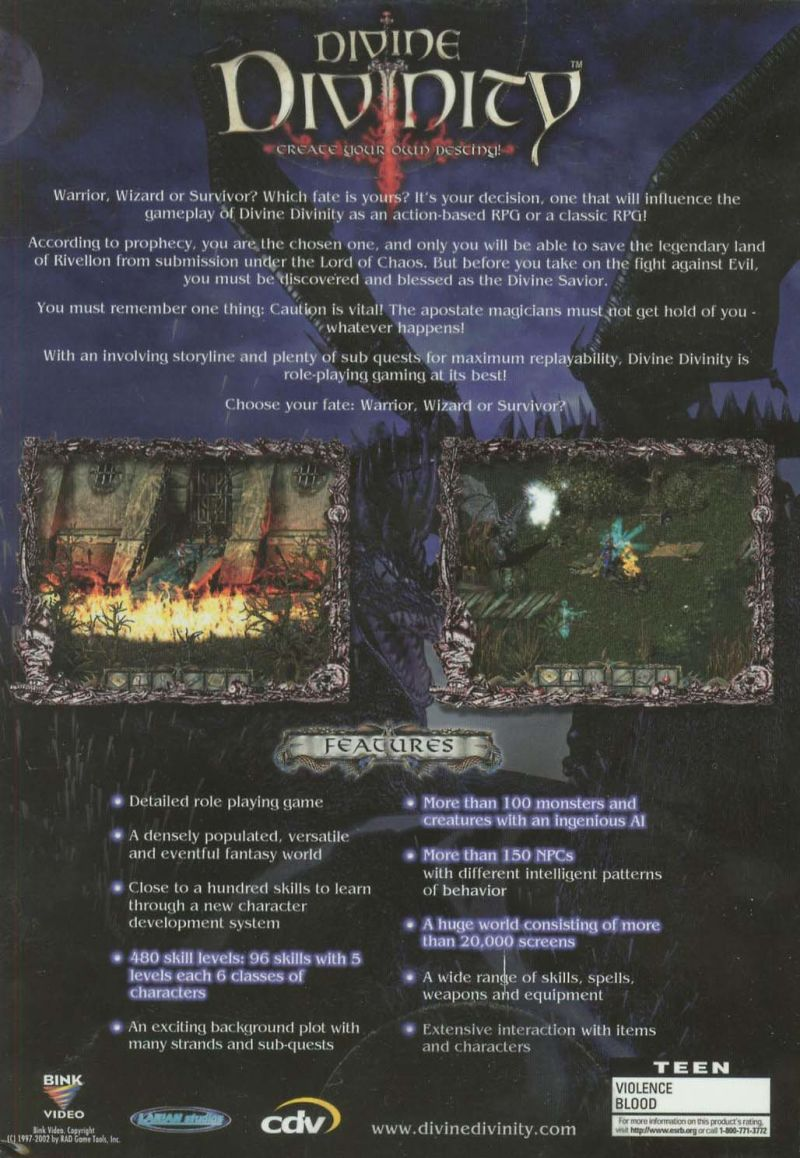 Divine Divinity Windows Back Cover
