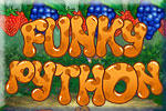 Funky Python Windows Front Cover