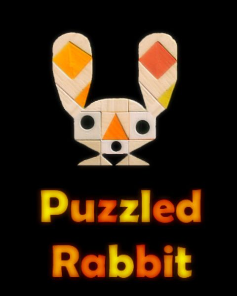 Puzzled Rabbit Windows Front Cover