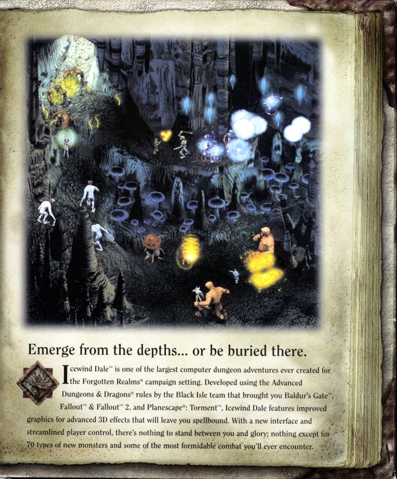 Icewind Dale Windows Inside Cover Right Flap