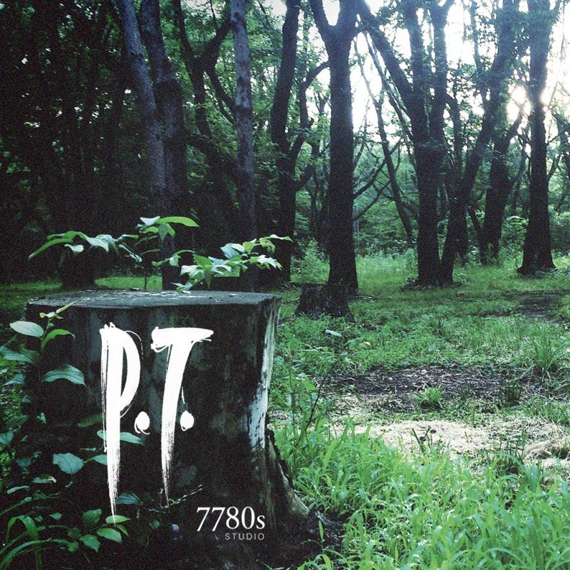 Image result for P.T. cover