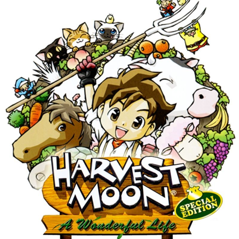 how to play harvest moon a wonderful life