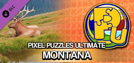 Pixel Puzzles Ultimate: Montana 2016 pc game Img-3