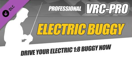 VRC-Pro: Electric Buggy
