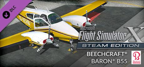 Microsoft Flight Simulator X: Steam Edition - Beechcraft Baron B55