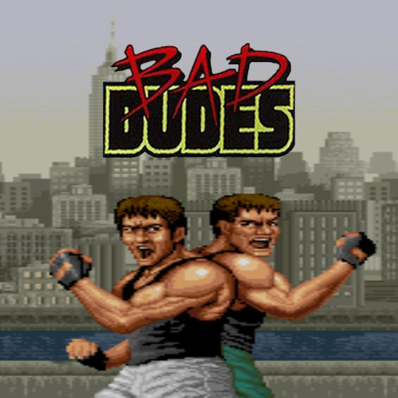 Bad Dudes Nintendo Switch Front Cover