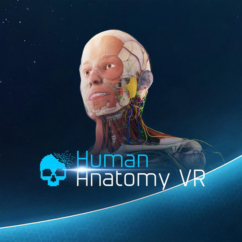 Human Anatomy VR for Android (2019) - MobyGames