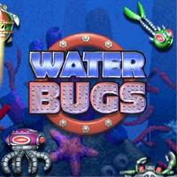 Water Bugs Windows Front Cover