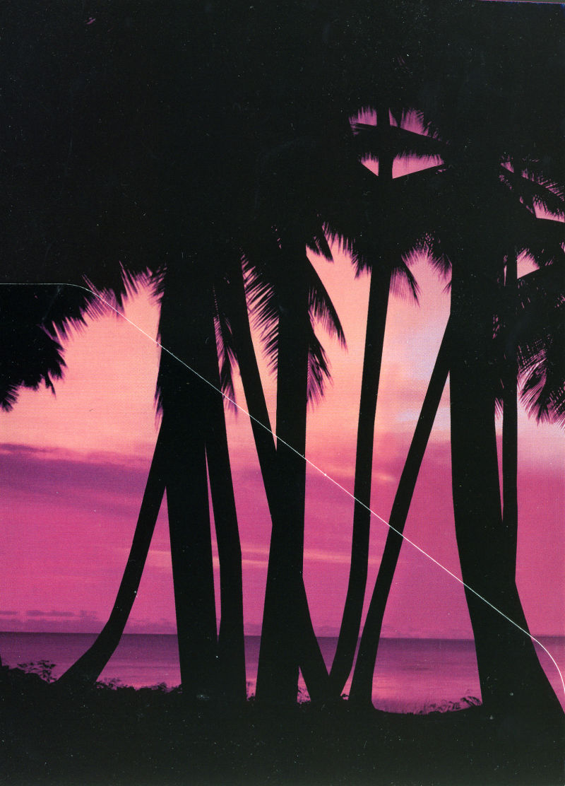 Grand Theft Auto: Vice City Windows Inside Cover Left Flap - Front (Holds Manual)