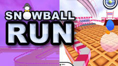 Snowball Run Windows Front Cover