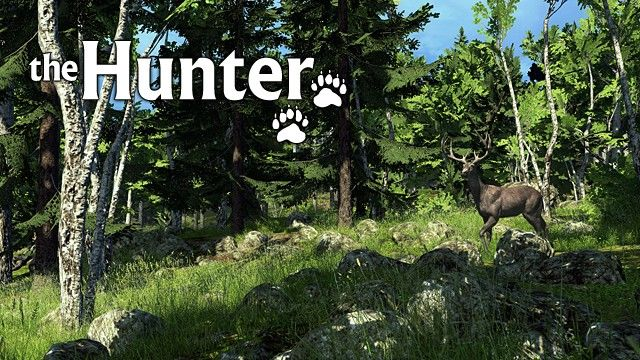 theHunter Windows Front Cover
