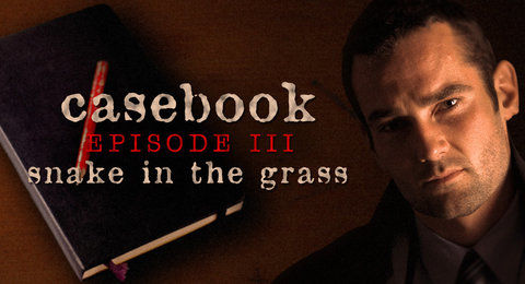 Casebook: Episode III - Snake in the Grass Windows Front Cover