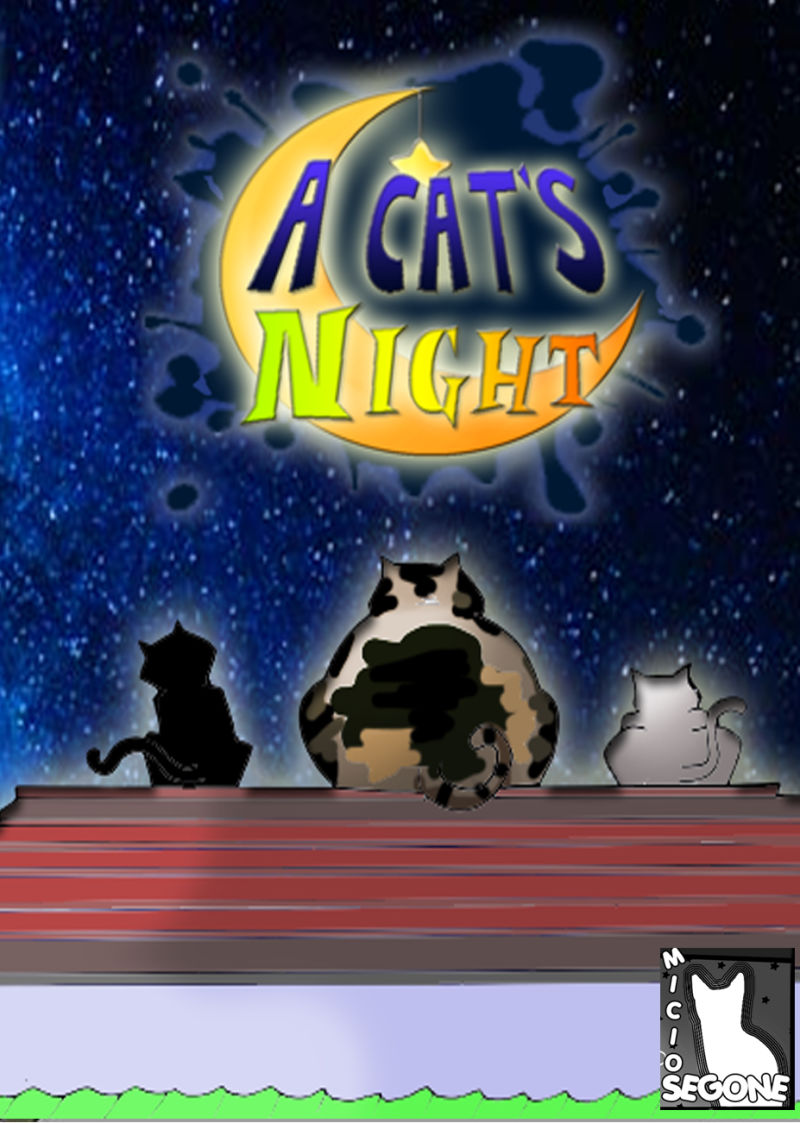 A Cat's Night Windows Front Cover