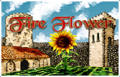 Fire Flower Windows Front Cover