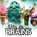 Tiny Brains PlayStation 3 Front Cover