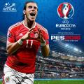 UEFA Euro 2016/PES 2016: Pro Evolution Soccer PlayStation 4 Front Cover