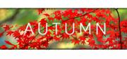 Autumn Linux Front Cover
