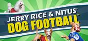 Jerry Rice & Nitus' Dog Football Windows Front Cover