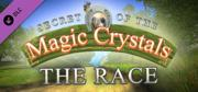 Secret of the Magic Crystals: The Race Linux Front Cover