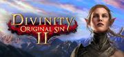 Divinity: Original Sin II Windows Front Cover