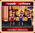 Double Dragon Nintendo Switch Front Cover