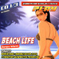 Virtual Resort: Spring Break Windows Front Cover