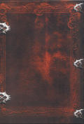 Neverwinter Nights 2 (Chaotic Evil Edition) Windows Back Cover