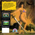 Death Sword Amiga Back Cover
