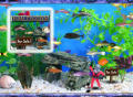 Fish Tycoon Windows Front Cover