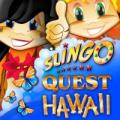 Slingo Quest Hawaii Windows Front Cover