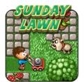 Sunday Lawn Browser Front Cover