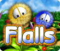 Flalls Windows Front Cover
