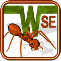 Ant Wars SE iPhone Front Cover