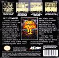 Double Dragon II: The Revenge Game Boy Back Cover