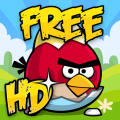 Angry Birds: Seasons iPad Front Cover
